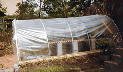 First greenhouse in the backyard, Brookline, MA, 1983
