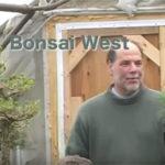 Michael creates a Black Pine Grove video