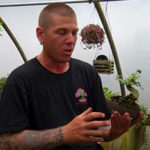 Erik Wigert, tropical bonsai specialist, on growing tropicals in New England