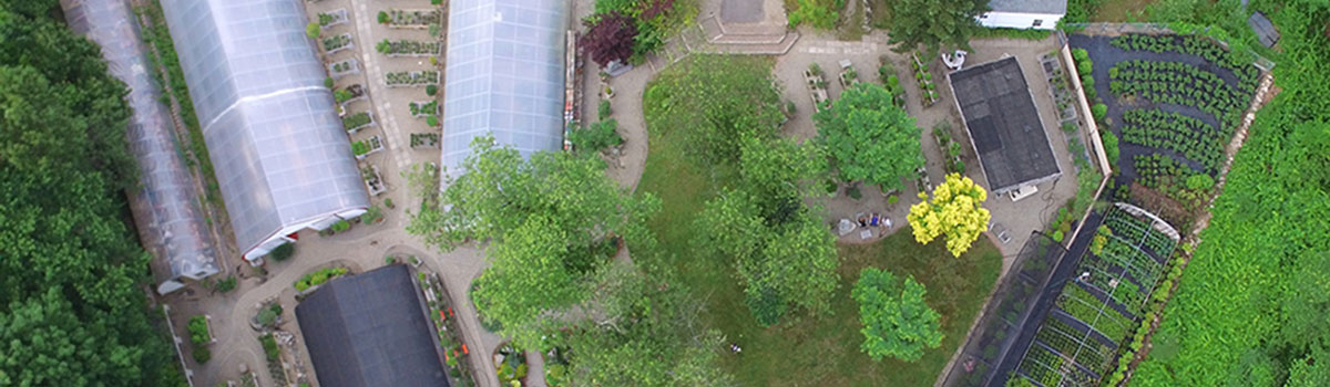 Aerial view of Bonsai West